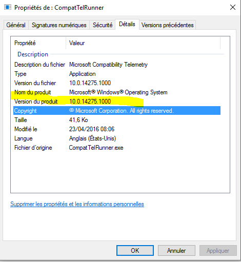 what is compattelrunner exe